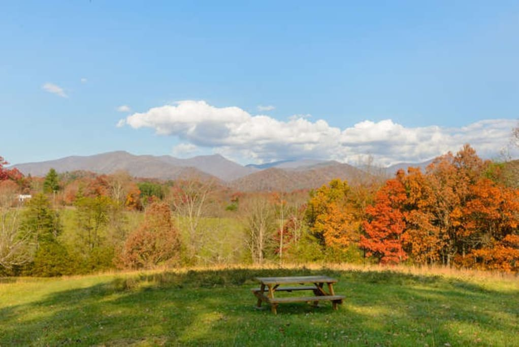 The picnic area is part of a common space and has a panoramic view.