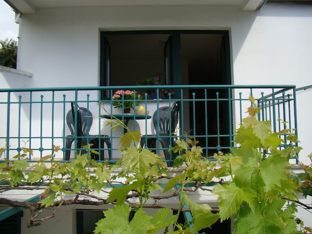 One-Bedroom - Apartments Milicevic - Herceg - Novi - Apartment