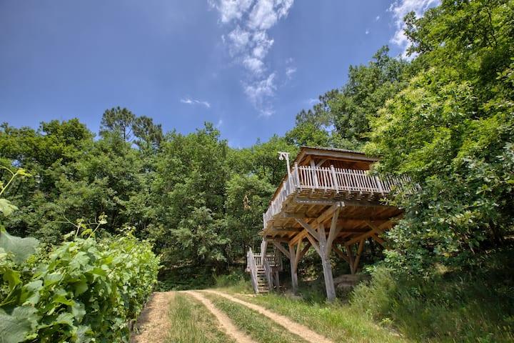 Cabane dans les arbres : Jaugas