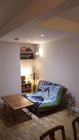 Living Room (with a double size sofa bed)