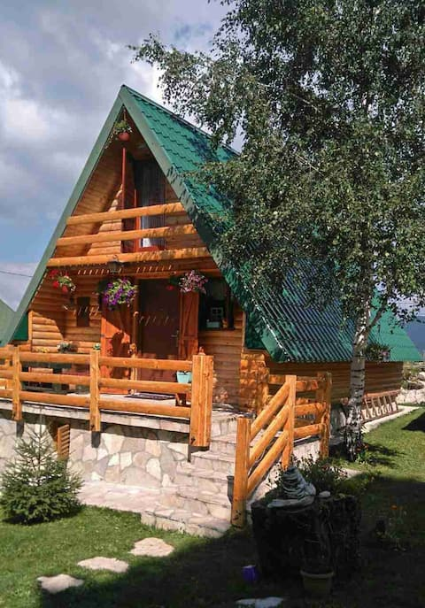 Quiet cottage in wooded area of Zabljak