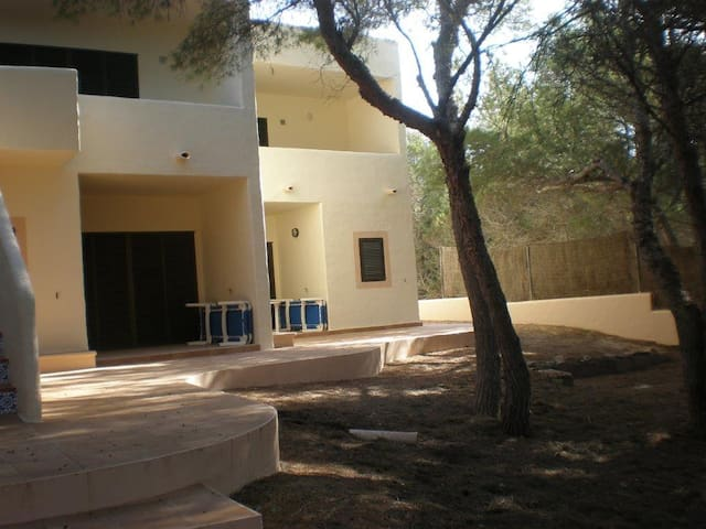 Apartment Dunas (2) - Islas Baleares - Appartement
