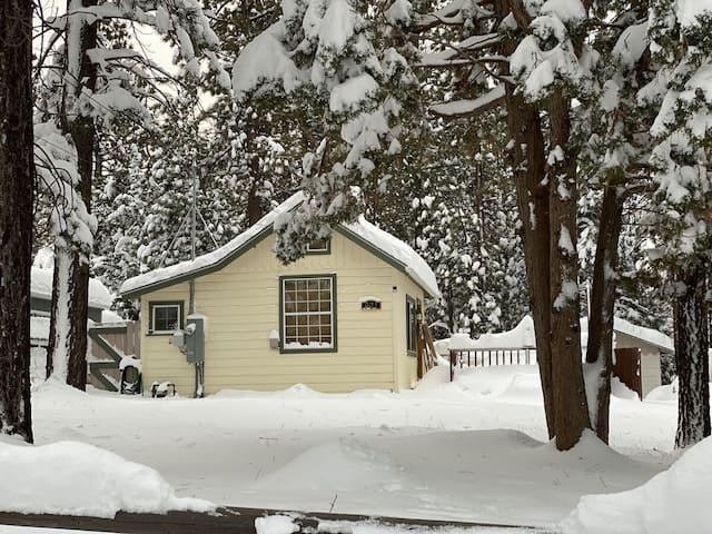 Winter Pines Cabin Adorable Studio With Private Hot Tub