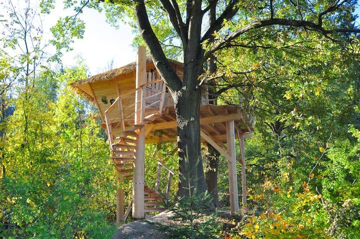 Treehouse - Český ráj