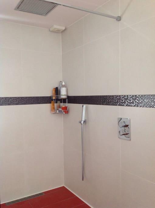 Salle de bain partagée avec une grande douche