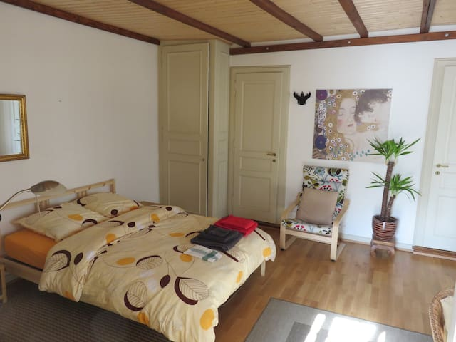 Very nice studio in the old town - Geneve - Huoneisto