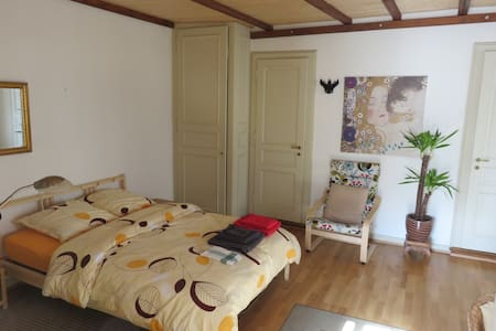 Very nice studio in the old town - Geneva