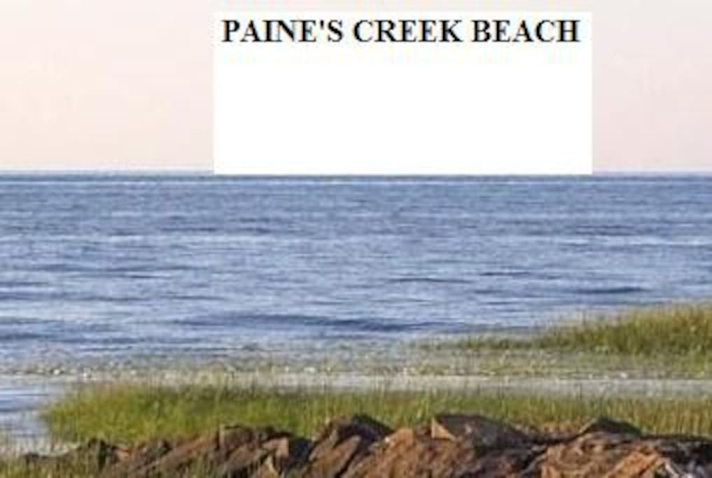 PAINES CREEK BEACH