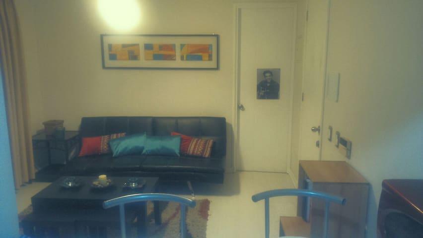 Apt. 1 room midtown, near Subway. - Santiago - Apartment