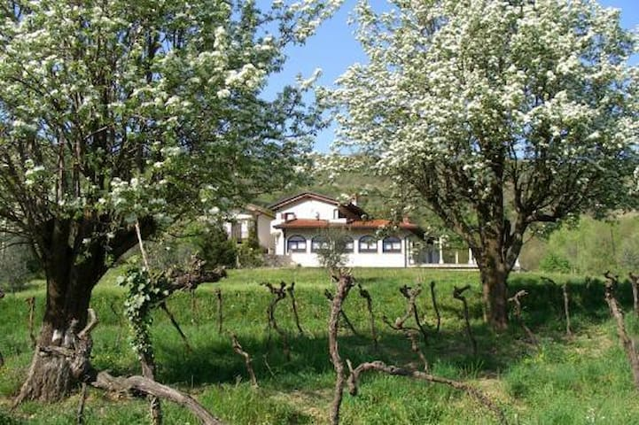 Brda Winery & Villa Accommodation - Podsabotin - Penzion (B&B)