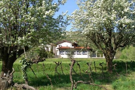 Brda Winery & Villa Accommodation - Podsabotin - Bed & Breakfast