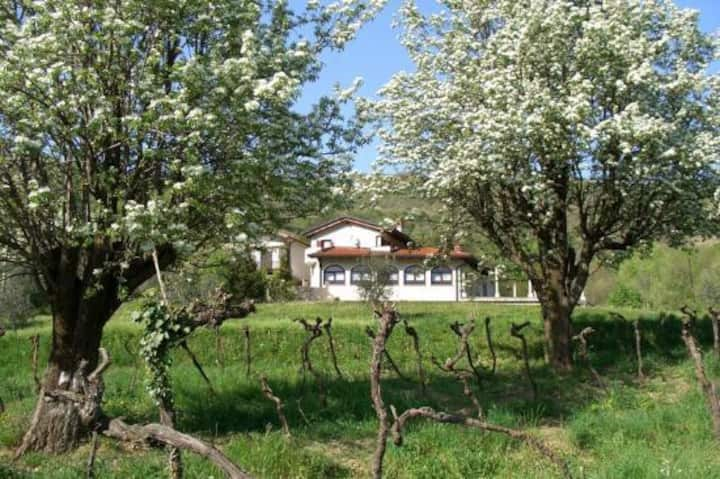 Brda Winery & Villa Accommodation - Room Nika