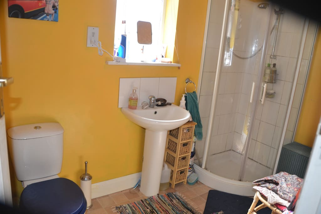 The shower room and toilet.