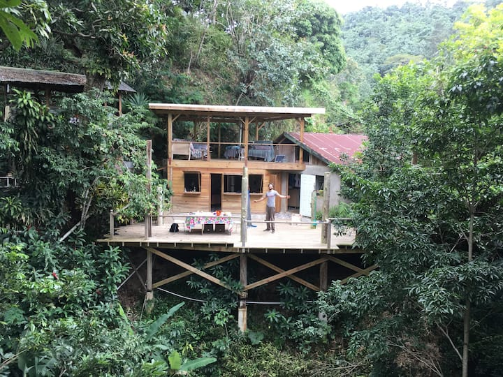 Jamaican Getaway, Blue Mountains