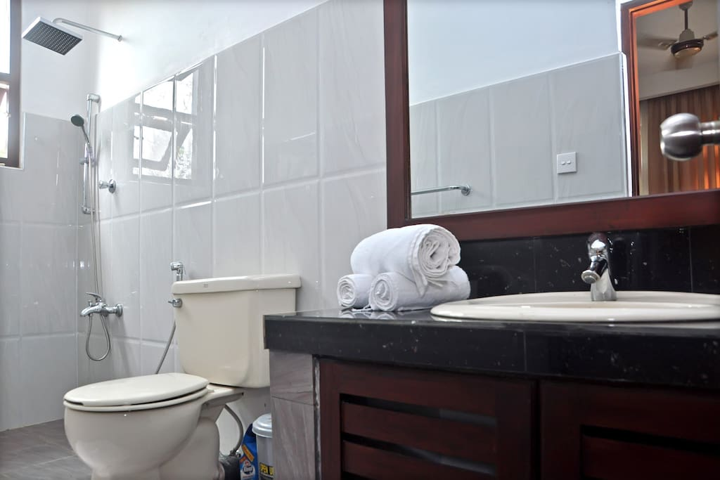 attached bathroom with shower