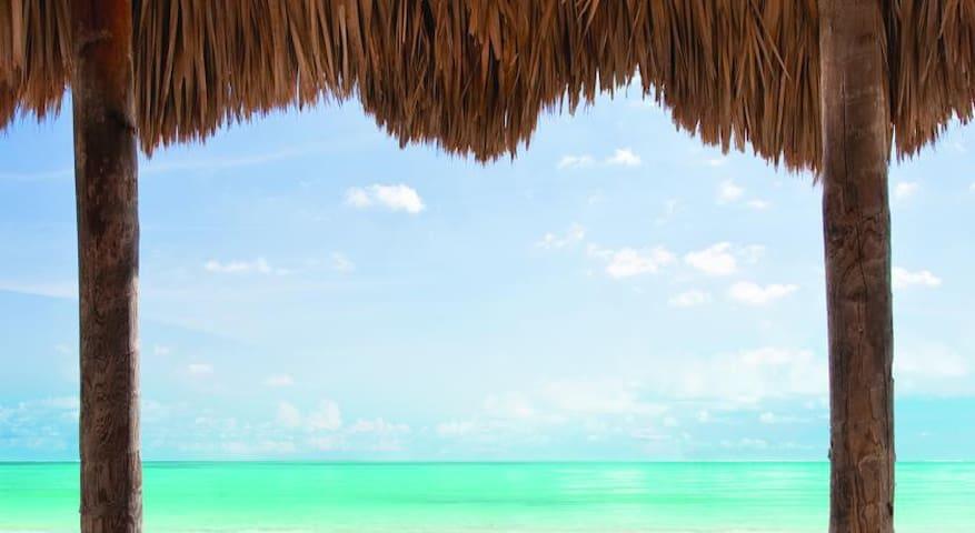NEWPORT BEACH RESORT SPRING BREAK SPECIAL!! - Sunny Isles Beach