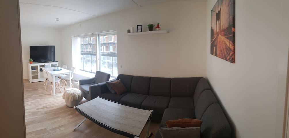 3 bedroom apartment near the center of Trondheim