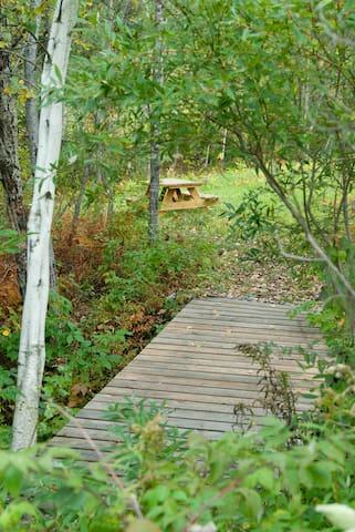 QuietTent Site at Four Springs Farm - Royalton