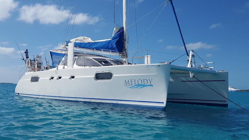 Blue Paradise Melody Luxury Yacht - Cocoa Beach - Barco