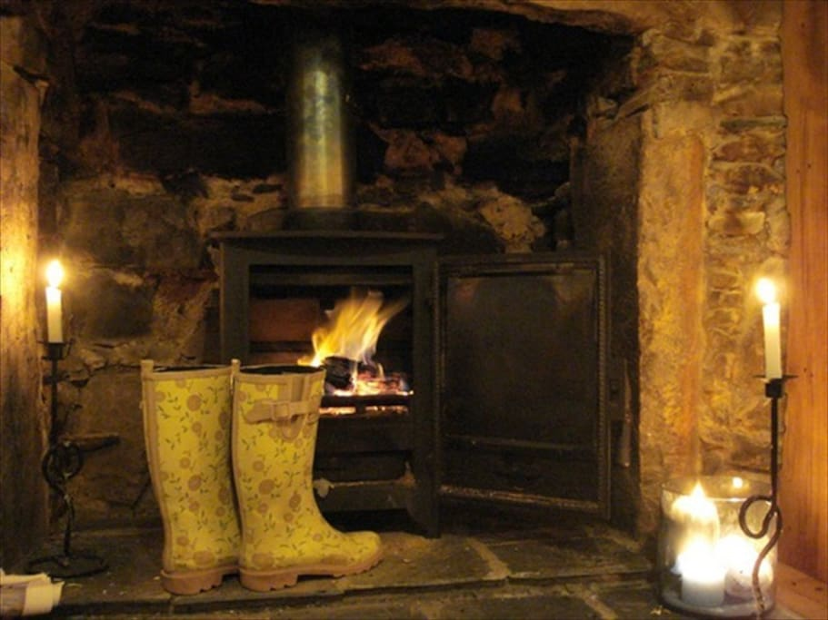 Cosy log fire