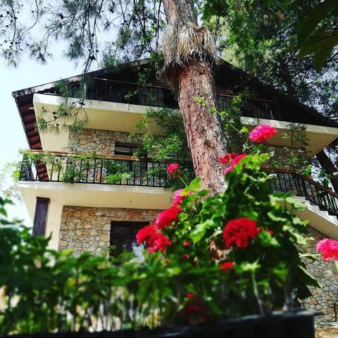 Faralia guesthouse 3