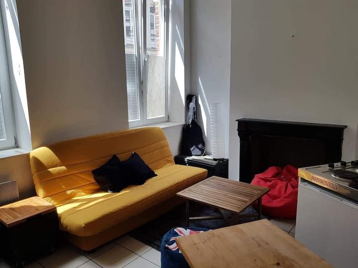 Appartement lumineux avec mezzanine en hypercentre