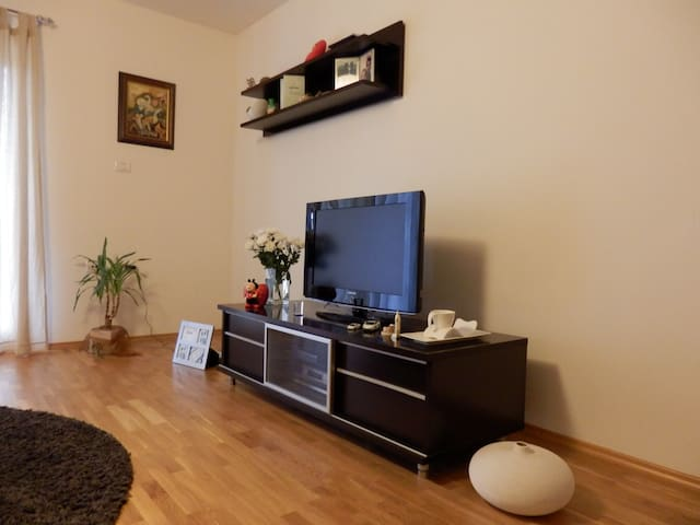 Apartment Kortina with 3BD **** - Buzet - Byt