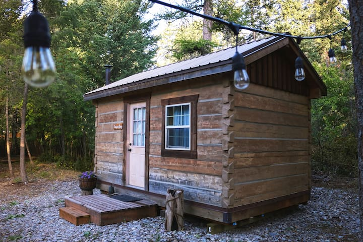 Bright, Clean & Simple Cabin on Flathead Lake