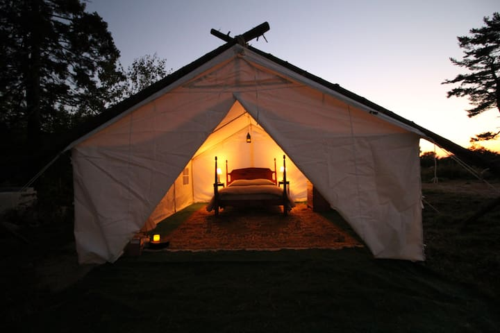 Wild Turkey Glamping Site