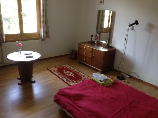 Room at the Aare river with huge garden - Bern - House