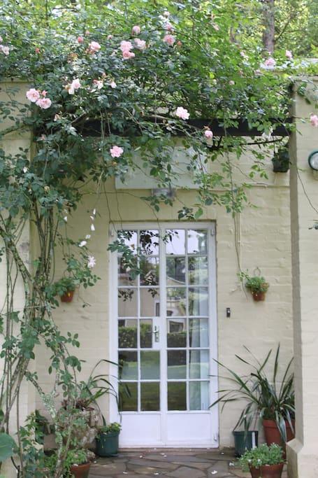 Our pretty little Bourbon Rose Cottage