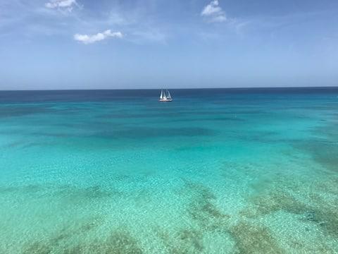 Luxury on the beach! Noahs Ark, Batts Rock