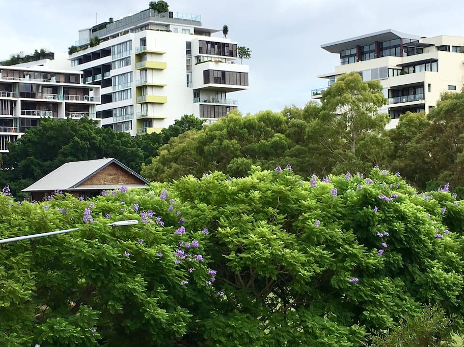 Relaxing Zen Style Apartment Apartments For Rent In