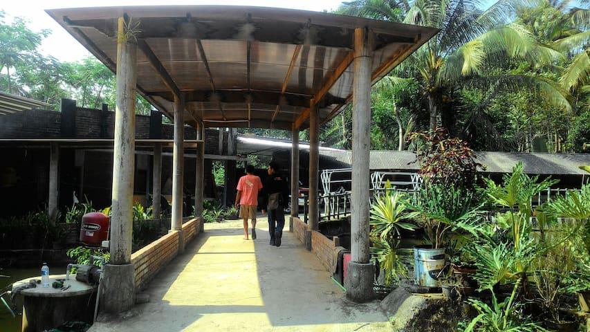 Tlogoguwo's Village - โยกยาการ์ตา - บ้าน