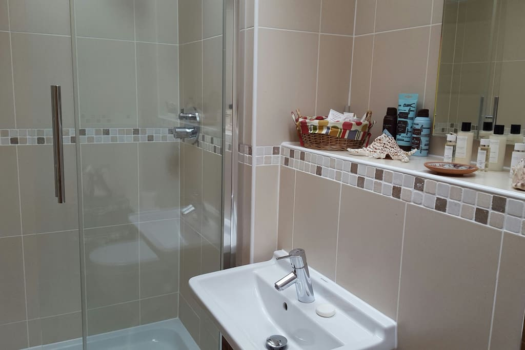 Large ensuite shower room with toiletries and towels