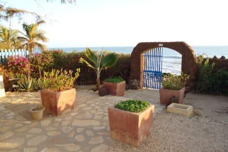 Vivre sur 1 plage Sénégal, expérience unique - Dakar