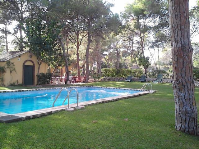 Gran piscina comunitaria (uso compartido)
