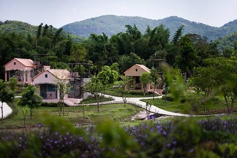 La Provence Suan Phung 1