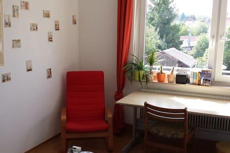 Bilder-Buch-Zimmer - Stoccarda - Appartamento