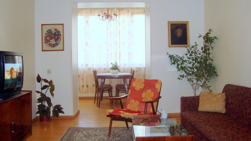Room&Breakfast - Yerevan - Appartement