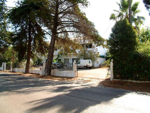 Aliojamento Bendormir - Loulé - House