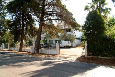 Aliojamento Bendormir - Лоле - Дом