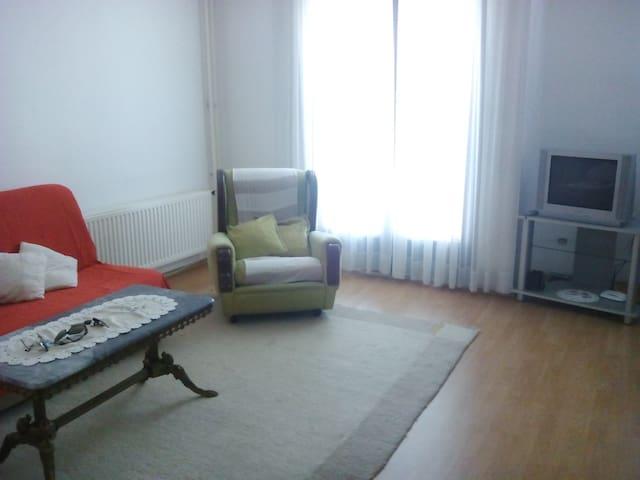 Comfortable apartment on Ilidža - Ilidža - Leilighet