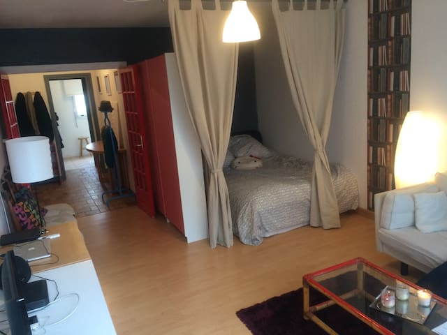 Huge 1Bedroom apart, near Paris - Chevilly-Larue - Apartment