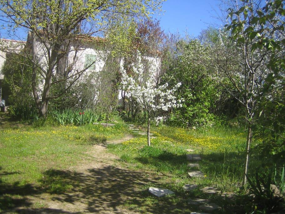 Jardin au mois de mars