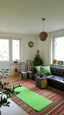 Charmante ältere Wohnung, gute Lage - Basel - Apartment