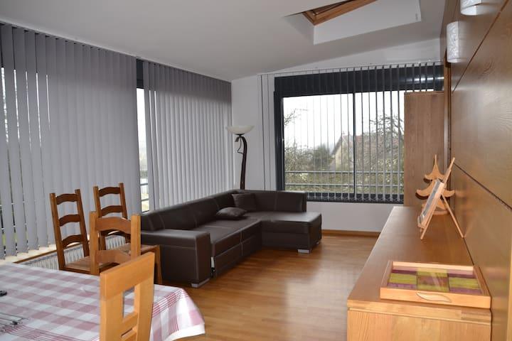 Maison d'architecte 6 chambres panoramiques - Épinal - House