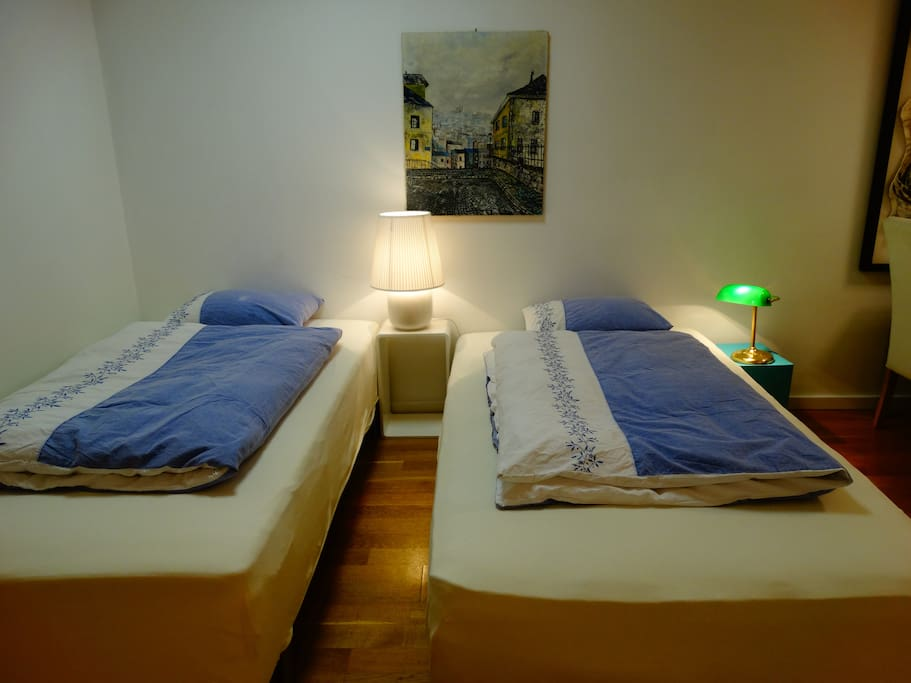 Two sleeping beds in the living room.  Each 120 x 200 cm.