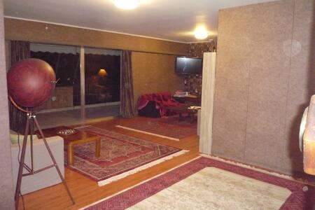 Cozy quiet apartment - Nea Ionia - Appartement