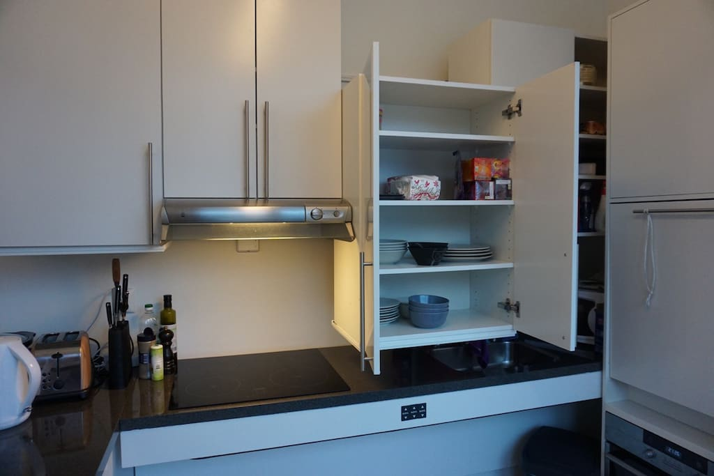 Kitchen with handicap accesible solitions